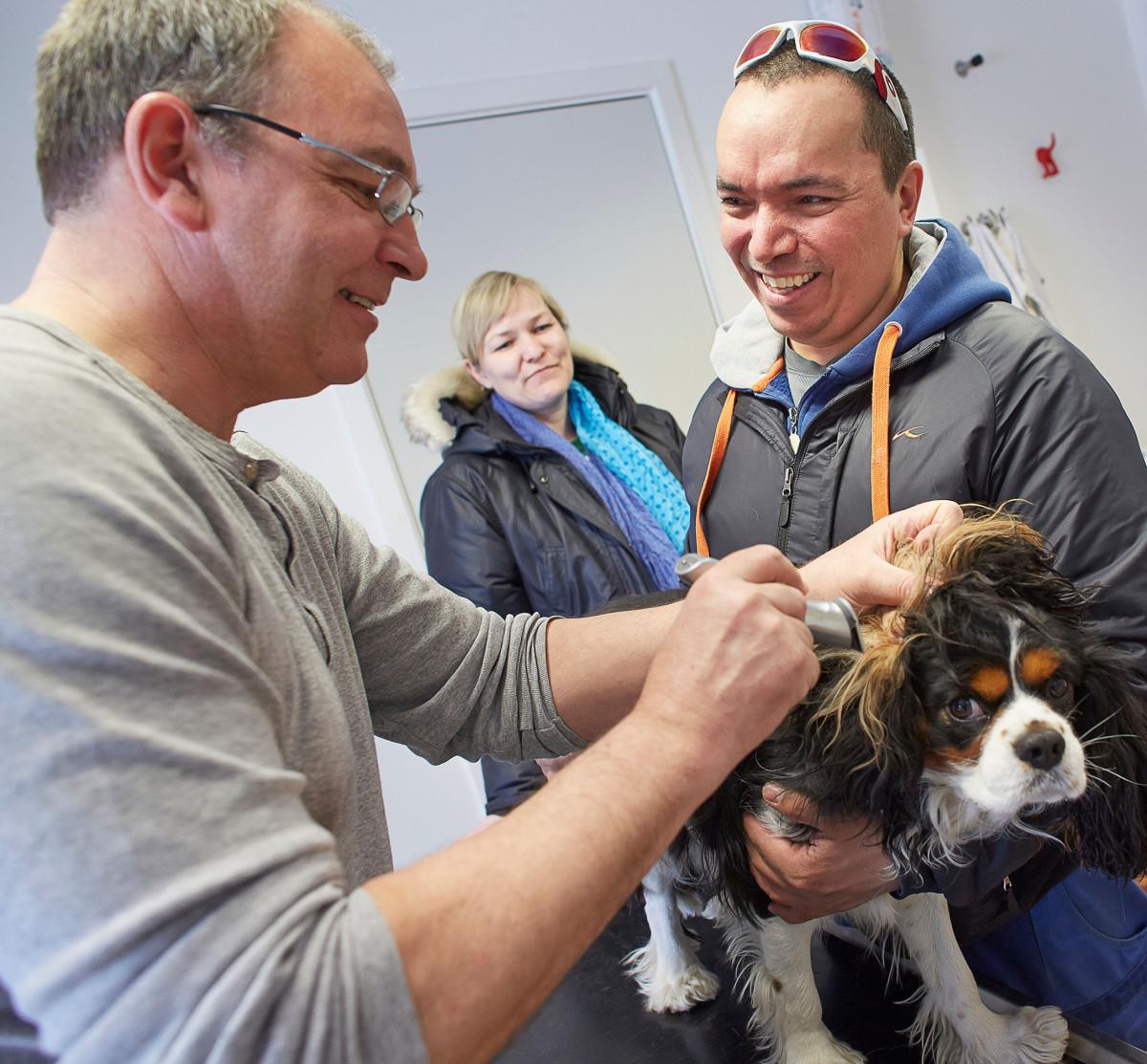 Dyrlæge Jens Eslau, undersøger hunden Chilli, Mens ejeren John og Sasha Ostermann hjælper til